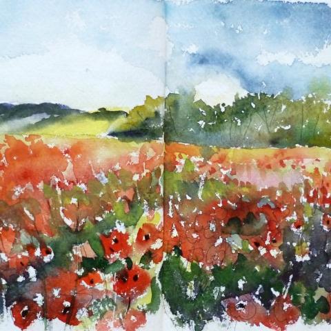 Watercolour sketch of poppy fields in Oxfordshire countryside by Elizabeth Baldin
