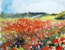 Poppy Field Sketch