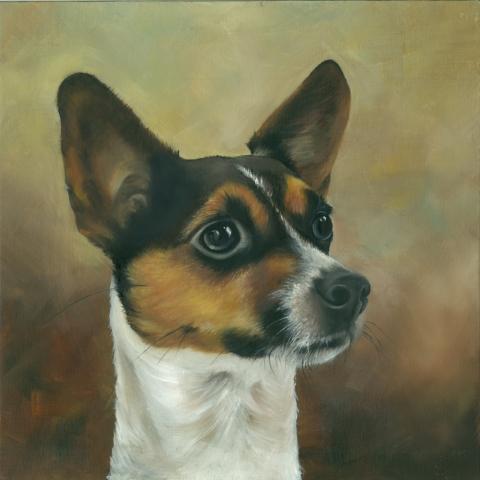 Traditional oil portrait of a Jack Russell Terrier by Elizabeth Baldin