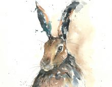 Spring Hare (card)