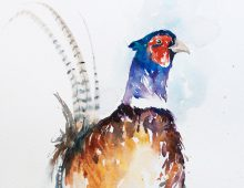 Pleasant Pheasant (Print) £65