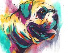 British Bulldog (print) £50