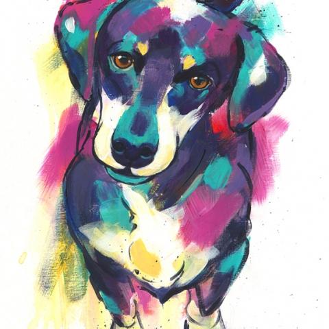 Modern colourful print of a Dachshund dog